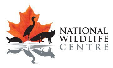 National Wldlife Centre